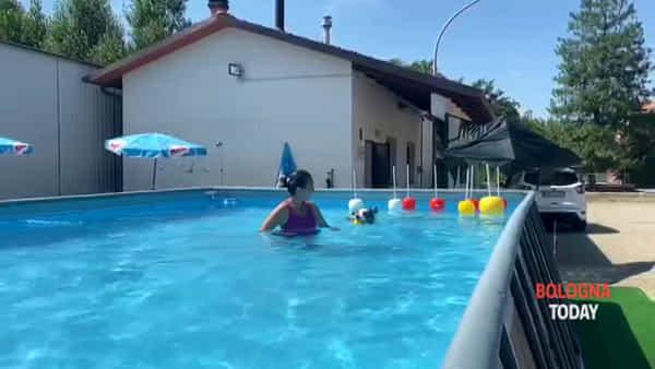 VIDEO|Ozzano: la piscina dove i cani possono giocare e imparare a nuotare