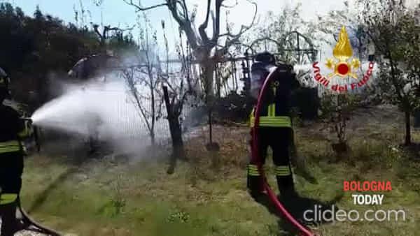 Video| Incendio a Imola: a fuoco capanno, lungo intervento dei Vigili del Fuoco
