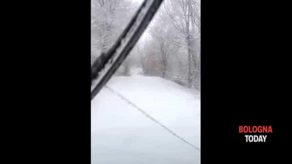 Neve, Loiano imbiancata | VIDEO