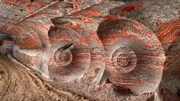"""""""Anthropocene"""": mostra multidisciplinare sull'impatto dell'uomo sul pianeta"""