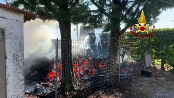 Incendio a Imola: catasta di legna prende fuoco, vigili del fuoco alle prese con una montagna di brace | VIDEO