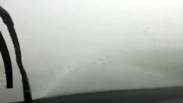 Nubifragio su Bologna: pioggia battente Traversale di pianura|VIDEO
