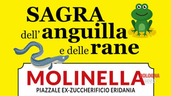 Sagra dell'anguilla e delle rane di Molinella