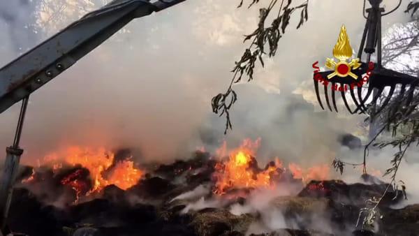 Bentivoglio, le fiamme travolgono un'azienda agricola | VIDEO