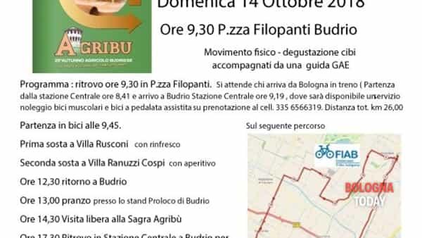 Pedalare per passione: turismo in bicicletta