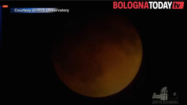 Eclissi di Luna: ecco cosa vedremo stanotte