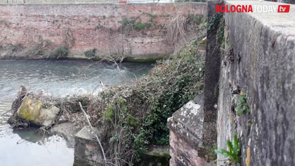 Pulizia e lavori idraulici: al via il cantiere sul canale Navile | VIDEO