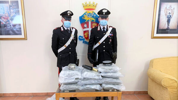 Blitz in via Dossetti: sequestrati 17 kg di marijuana