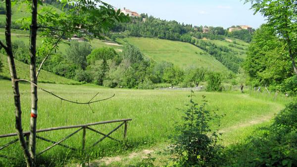 """""""Le colline fuori della porta"""": passeggiate ed escursioni per i colli bolognesi"""