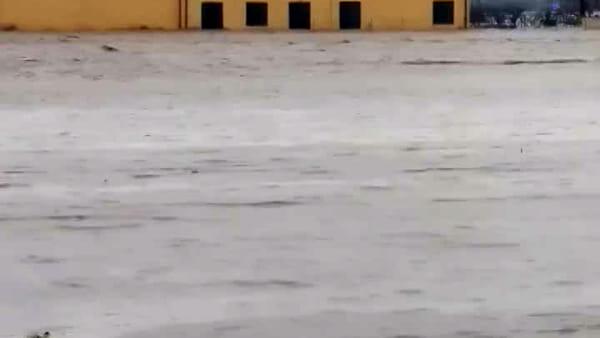 Maltempo, la piena del Reno arriva a Castel Maggiore: il fiume rompe gli argini