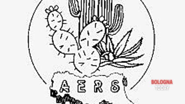 33° mostra di piante grasse