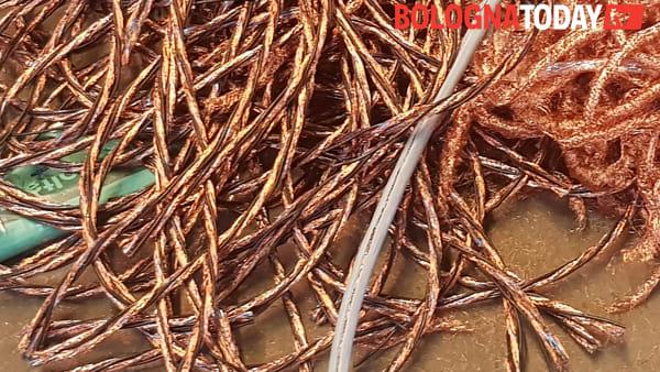 Traffico illecito di rifiuti: scoperta una discarica abusiva a Budrio