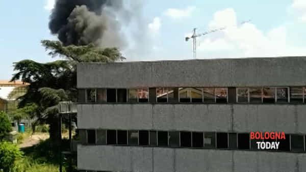 VIDEO   Fiamme e alta colonna di fumo, incendio alla Casaralta